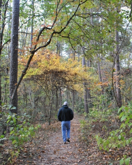 dangerfield state park
